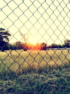 Sun set through fence