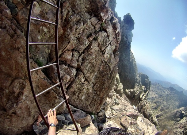 Circus Ladder