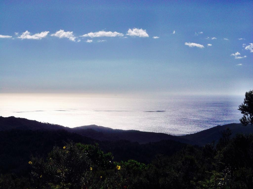Sea the Coast