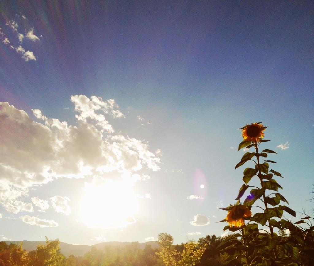 Photo Sep 07, 6 27 27 PM