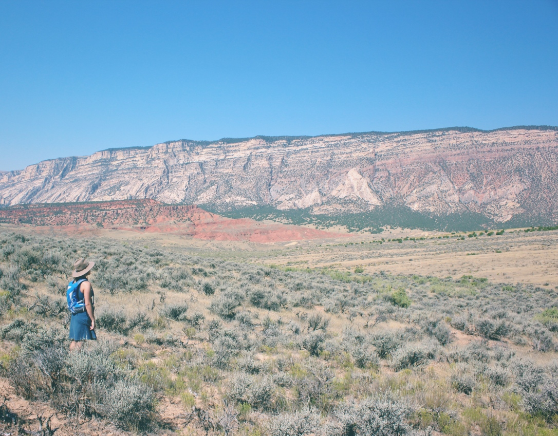 dinosaur national monument - in any direction 16