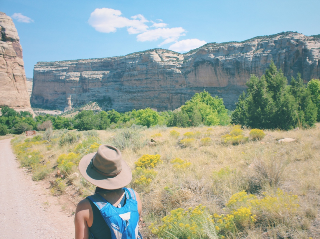 dinosaur national monument - in any direction 17